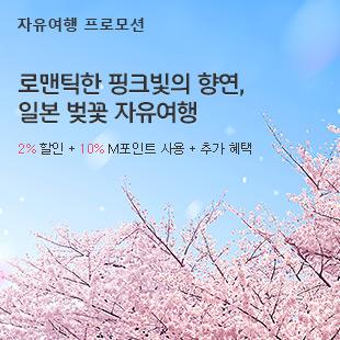 (자유여행)일본 벚꽃