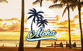 다채로운 매력의 하와이<br>인기 호텔 추천