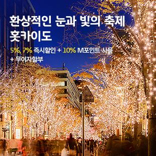 환상적인 눈과 빛의 축제 홋카이도